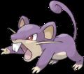 Comment capturer Rattata ?