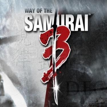 Way of the Samurai 3 sur PC