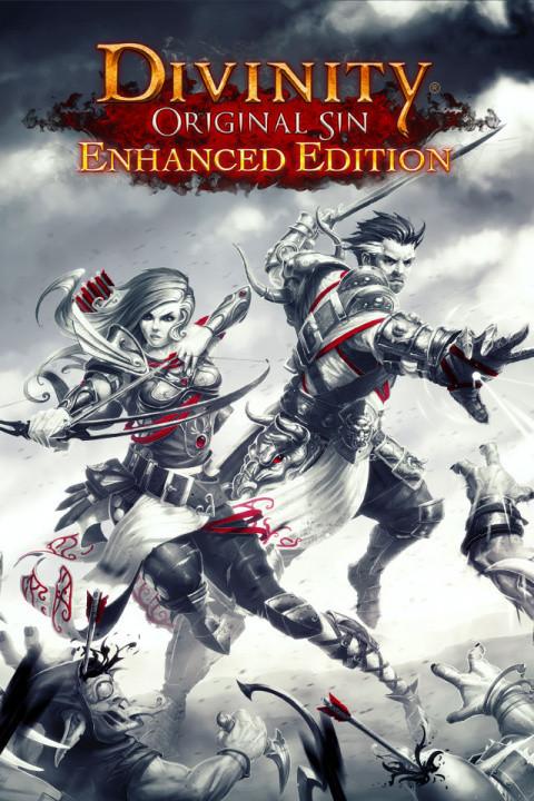 Divinity : Original Sin - Enhanced Edition sur PC