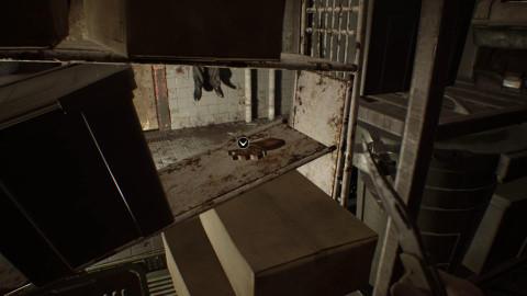 Chapitre 3 - Les Têtes de chien (Résidence principale, Zone de traitement)
