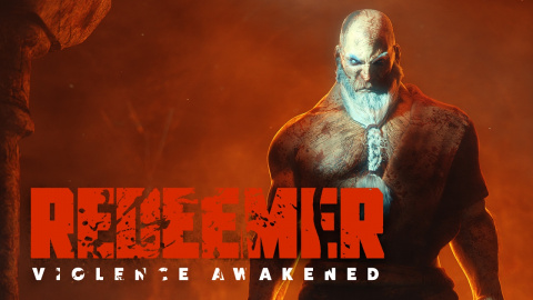Redeemer : Enhanced Edition sur PC