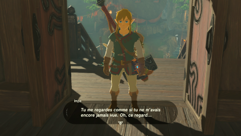 The Legend of Zelda : Breath of the Wild - L'Aventure, avec un grand A