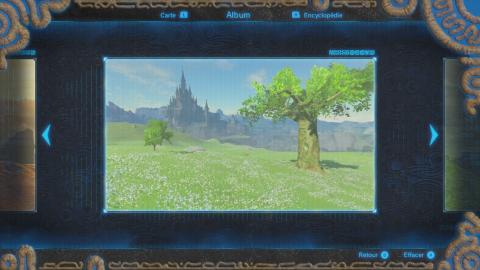 Souvenirs de Link / Photos de Zelda