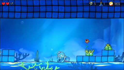 Chapitre Piranha