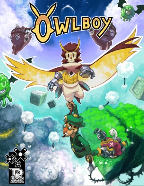Owlboy sur PC