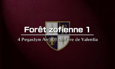 Alm - Forêt Zofienne 1