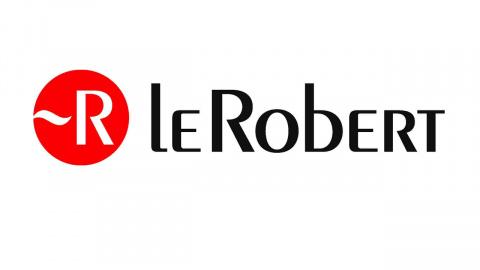 """Jaquette de Pour Le Robert, """"jeux vidéo"""" s'écrit désormais """"jeux vidéos"""""""