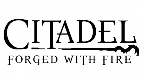 Citadel : Forged with Fire sur PC