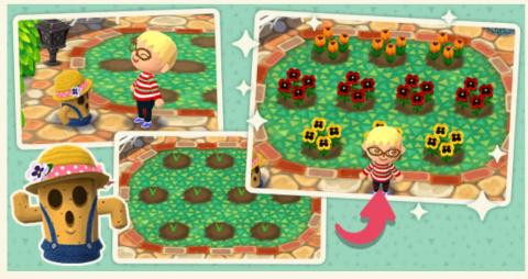 Animal Crossing : Pocket Camp - La prochaine mise à jour se présente