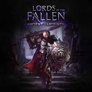 Lords of the Fallen : Ancient Labyrinth sur ONE