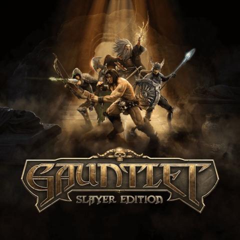 Gauntlet : Slayer Edition sur PS4