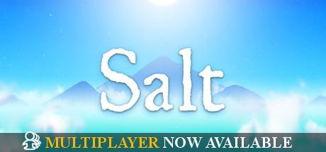 Salt sur PC