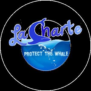 La Charte : Protect the Whale sur Vita