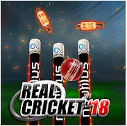 Real Cricket™ 18 sur Android