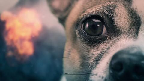 God of War : il est temps de lâcher les chiens