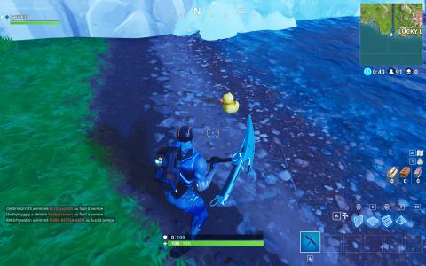 Emplacement des canards en plastique