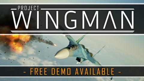Project Wingman sur PC