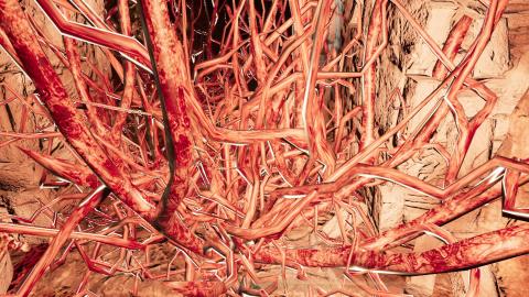 Les rivières de sang