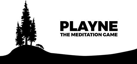 Playne : The Meditation Game sur PC