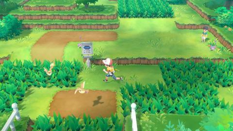 Pokémon Let's Go Pikachu  Évoli- Les créatures exclusives à chaque version