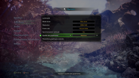 Monster Hunter World : La version PC valait-elle son attente ?