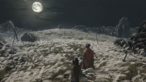 Sekiro Shadows Die Twice - Un mariage réussi entre Dark Souls et Tenchu
