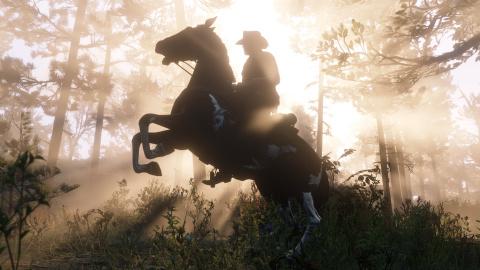 Le sens du détail dans le cheval (informations supplémentaires)