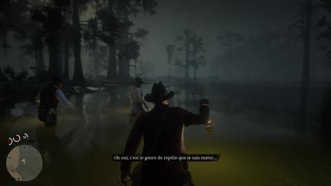 Promenade dans le bayou