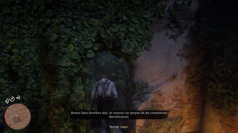 Une sauvagerie sans limite