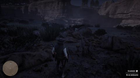 Os de dinosaures - La force des convictions