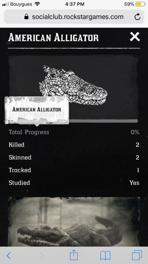 Companion app Red Dead 2 : à quoi sert l'application mobile de Rockstar ?