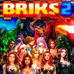 BRIKS 2 sur PC