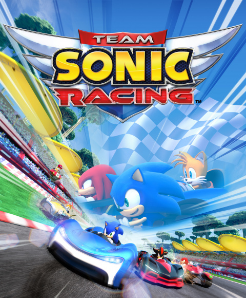 Team Sonic Racing sur PC