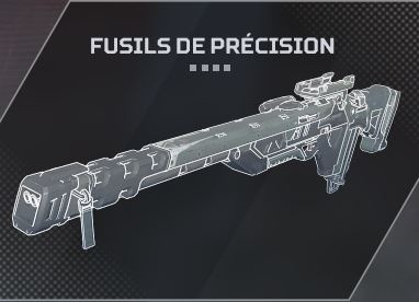 Fusils de précision