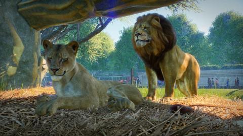 Un DLC glacé pour Planet Zoo le 17 décembre