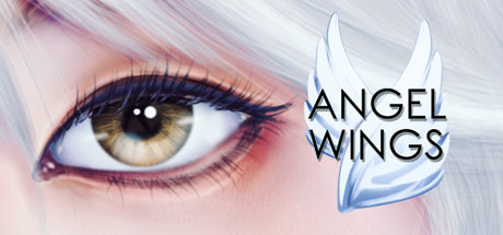 Angel Wings sur PC