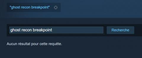[MàJ] Ghost Recon Breakpoint fait l'impasse sur Steam