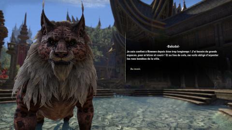 Test de The Elder Scrolls Online - Elsweyr par jeuxvideo com