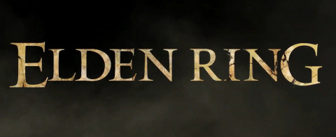 Elden Ring sur PC