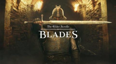 The Elder Scrolls Blades sur Switch
