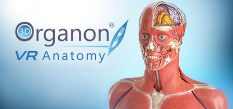 3D Organon VR Anatomy sur PC