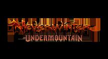 Neverwinter : Uprising sur PS4