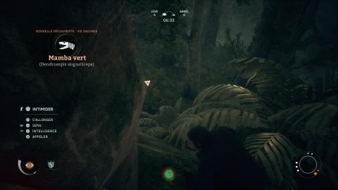 Les dangers de la jungle, fuire ou combattre?