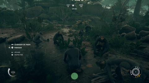 Clan et interactions sociales