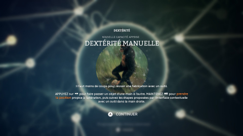 Ancestors : The Humankind Odyssey, l'importance des mutations spontanées dans l'évolution, notre guide