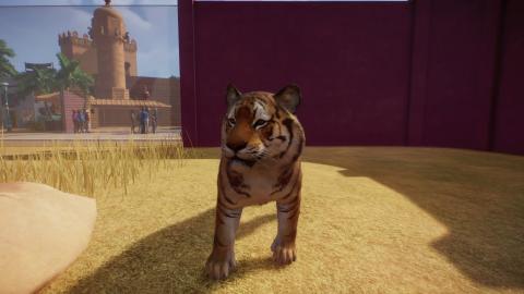 Planet Zoo impressionne par son mélange réussi entre création et gestion de parc - gamescom 2019