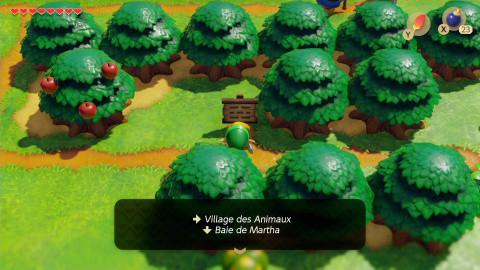 Le village des Animaux