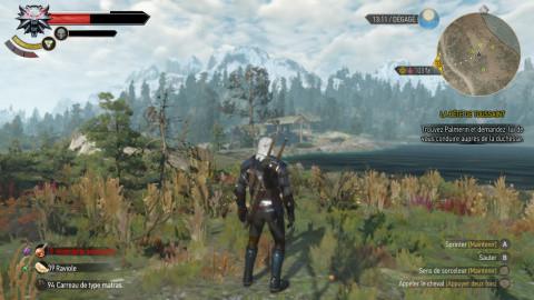 The Witcher 3 : Wild Hunt - Une version Switch à la hauteur ?