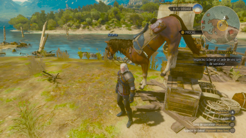 The Witcher 3 : Wild Hunt - Une version Switch à la hauteur ?