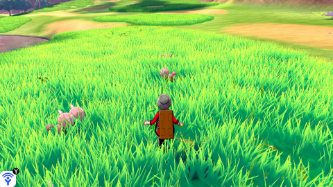 Pokémon Sword and Shield: A nice, but not exotic adventure